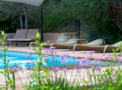 Holiday rental 6 bedroom villa in San Jose Ibiza